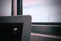 Virus, nessuna immunità per i Mac