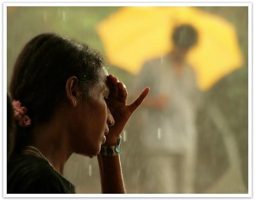 "portrait cisco srilanka ritratti colombo photographia platinumheartaward tearsrain artofimages ""photographia"" saariysqualitypictures bestportraitsaoi srilankafinediunaguerra srilankaendofawar lacrimepiogggia 18maggio2009"