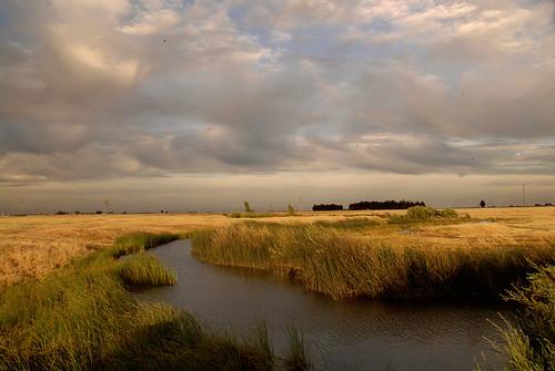 sky clouds nikon day cloudy marsh prairie d200 polarizer slough solano nikon18200vr jepsonprairie