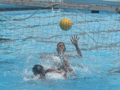 water & ball sports, water polo, swimming pool, swimming, sports, recreation, outdoor recreation, leisure, team sport, swimmer, water sport, ball game,