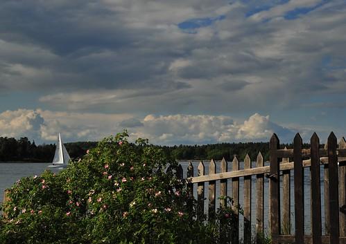 sea summer sky clouds landscape boat nikon sailing sweden lisa baltic archipelago vaxholm uppland littlepebble stockholmcounty lisadaniel d700 lickas lickas2007