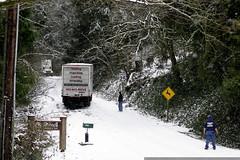 trucks stuck in the snow on cornell hill    MG 6538