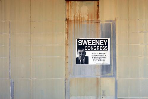 arizona composition poster election politics odd congress candidate unusual sentinel sweeney seelink