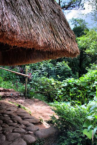 Hut in Tam-Avan Village