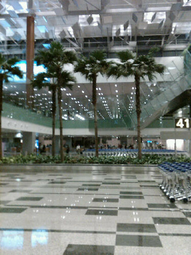 arrivals hall at changi airport singapore andrew green. Black Bedroom Furniture Sets. Home Design Ideas