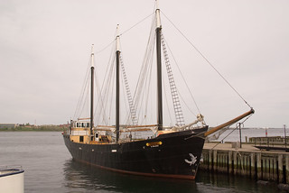 Silva, Halifax Harbour