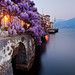 Italy - Lake Como: Wisteria Blues