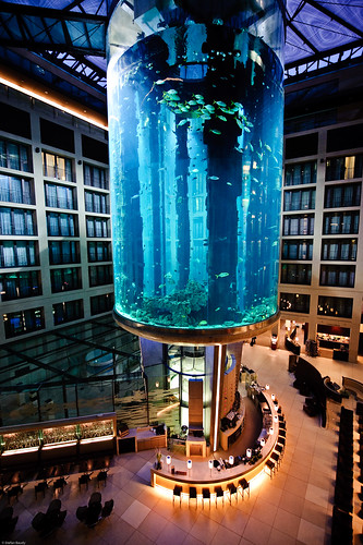 Aquarium in the berlin radisson sas hotel a photo on for Fish hotel tank