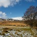 Small photo of Foel Fras