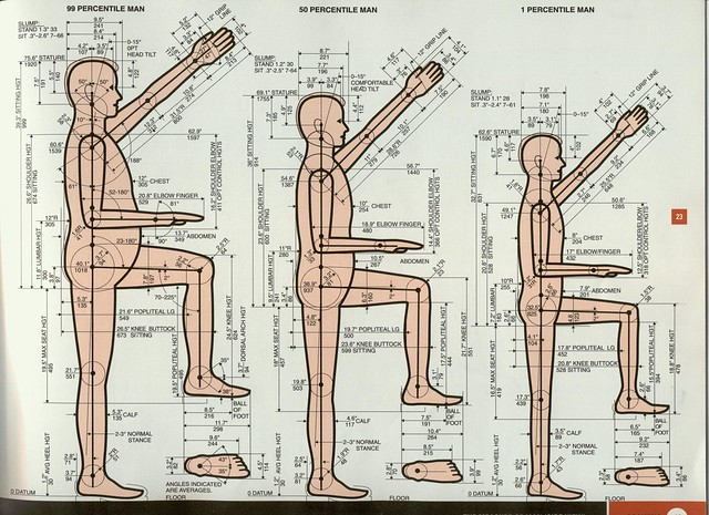 anthropometrics and ergonomics Cornell university ergonomics web dea3250/6510 class notes anthropometrics and design 1 design limitations a myth of designing for the average person - since there are no people whose body dimensions are all at the 50th percentile.
