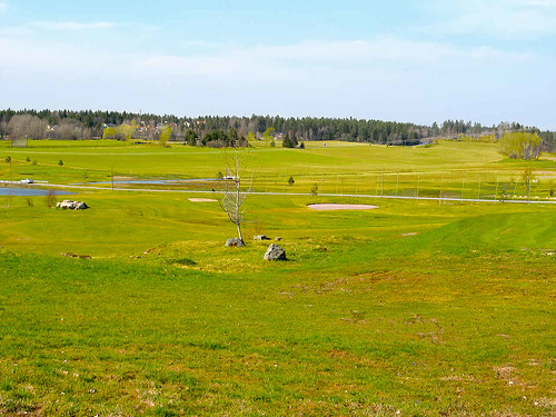 sweden uppland landscape spring view wallpaper grass forest scenery nature pastoral interesting skog wald foret landskap manzara county natura nordic paysage picture natur landschaft photography landscapes