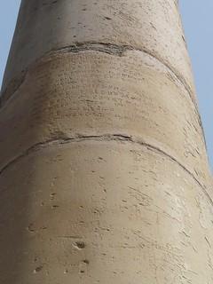 Image of Ashoka Pillar. delhi tughlaq ashokapillar firozshahtughlaq delhiridge tughlak