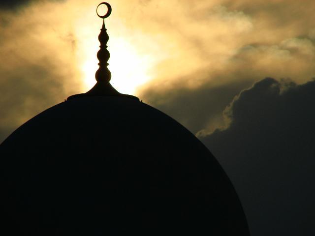 H.H. Sheikh Zayed Bin Sultan Al Nahyan Mosque الله يرحمه