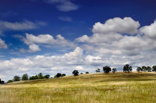 california blue trees summer sky usa white green nature grass clouds landscape outdoors golden nikon scenery horizon hill nopeople scene land northamerica hillside polarizer centralvalley d300 calaverascounty sigma30mmf14exdchsm graduatednd