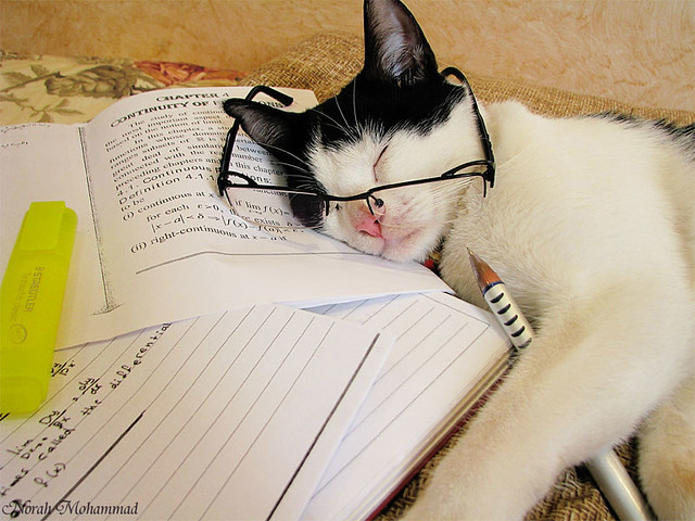 "Study  >_<"""