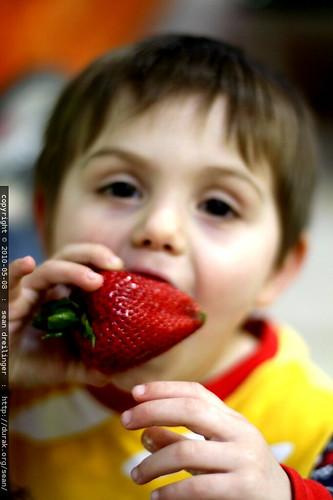 giant strawberry potty treat