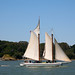 "Small photo of The historic scow schooner ""Alma"""