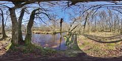 Mugdock: Allander Water 8 Mugdock Scotland Equirectangular