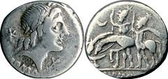 335/10 #0967-36 A.ALBINVS Apollo Dioscuri stand by drinking horses Denarius
