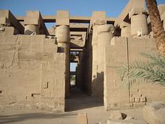 Egypt- (43)