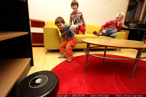 playing chicken with the roomba