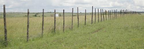 Kitengela rangeland in Kenya: Fencing