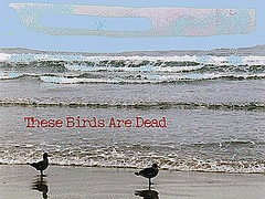These Birds Are Dead