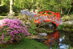Japanese Garden & Park Clingendael