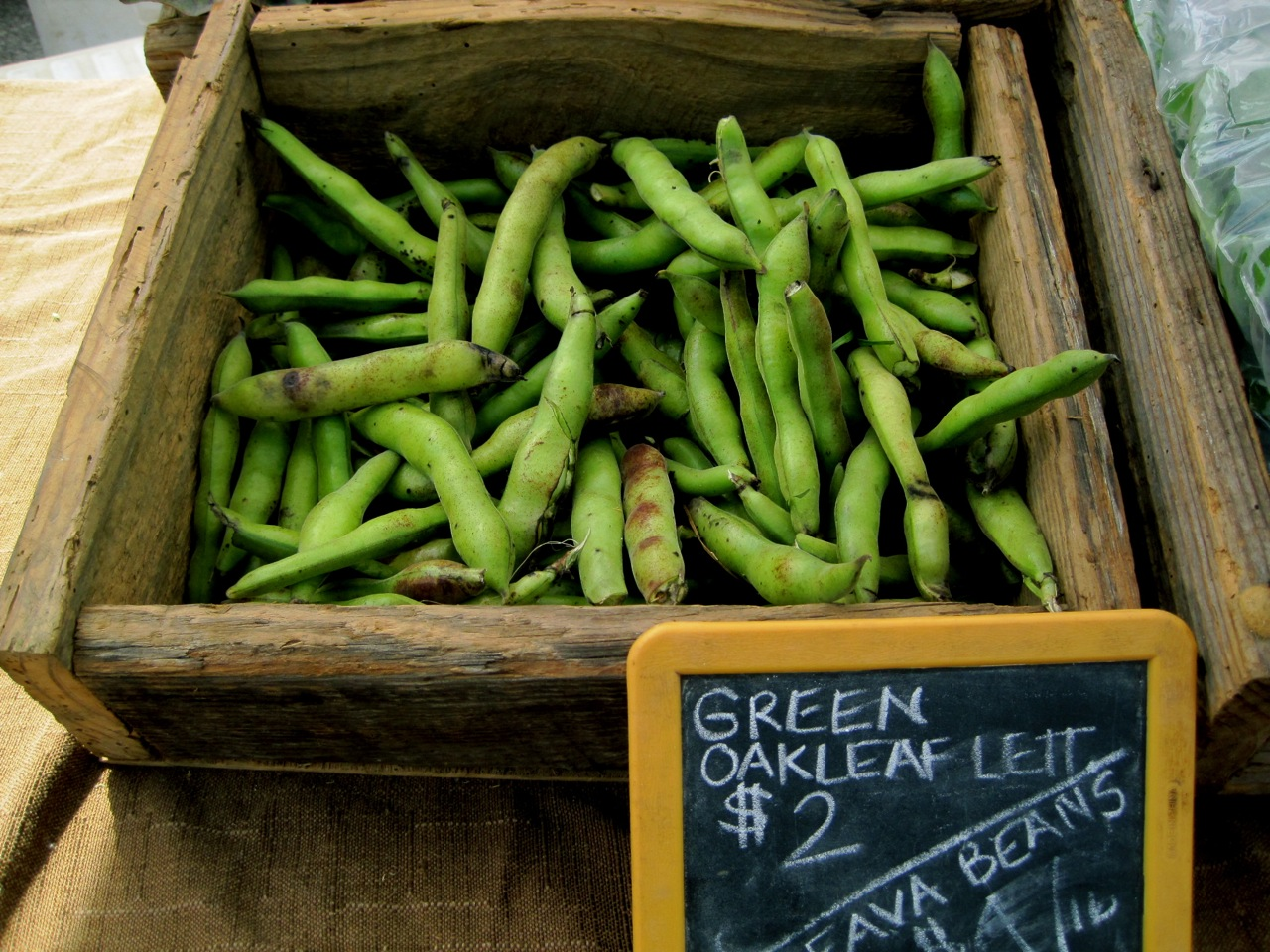 Market Special: Fava Beans