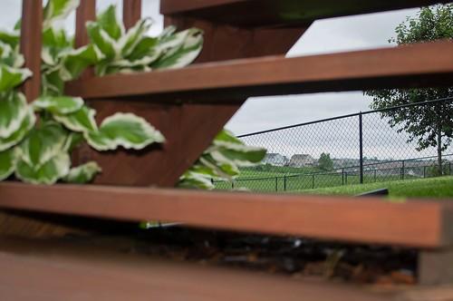 wood grass fence dof steps golfcourse hostas nikon35mm nikond5000