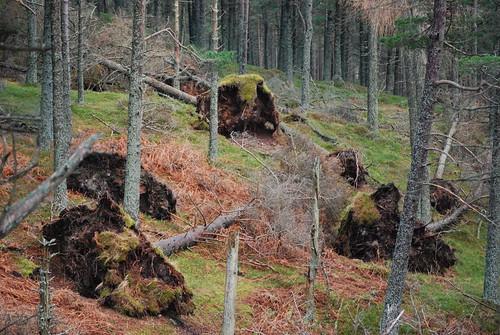 Route to Clachnaben