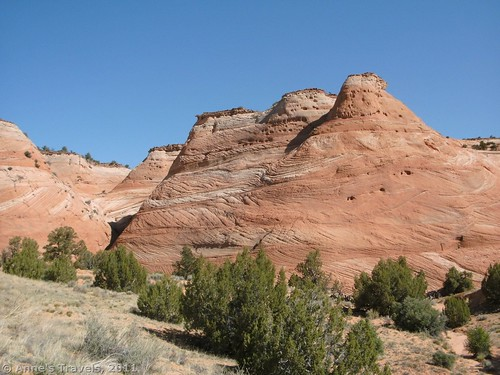Slickrock cones along the trail to the Zebra Slots in Grand Staircase-Escalante National Monument, Utah