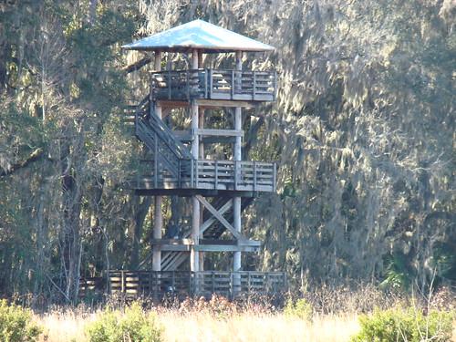 statepark florida wildlife micanopy paynesprairie