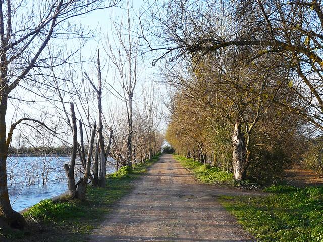 Camino a la Laguna