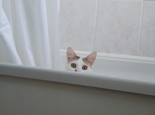there's something in my bath