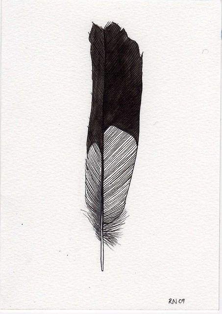 Black and white feather | Flickr - Photo Sharing!