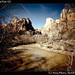 Zion National Park (7)