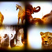 African Dream (African Lion Safari)