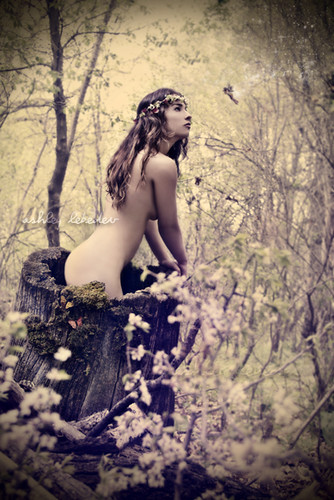 Awakening of the Dryad.