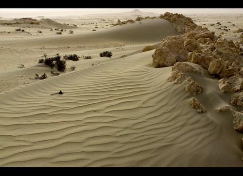 Bahrain - Shakeer - Sand texture