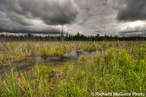 ontario canada clouds swamp wetlands hdr lanark