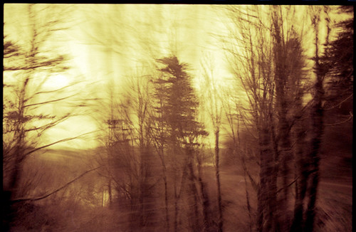 road trees blur bus film window 35mm view pentax columbia gorge mesuper redscale