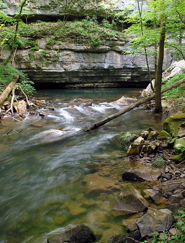 water creek forest spring big stream gulf tennessee cave scotts cccp resurgence scottsgulfcampout052608