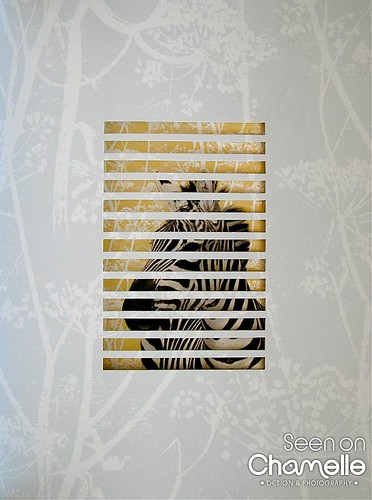 Animal House - Zebra window