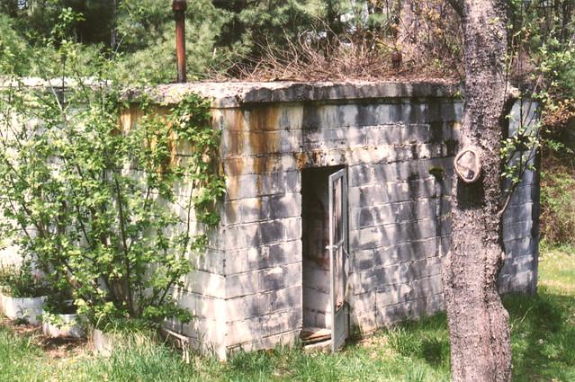 Backyard shelter