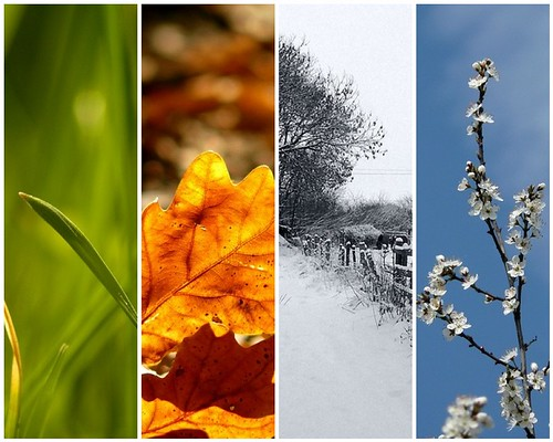 4 seasons in one day