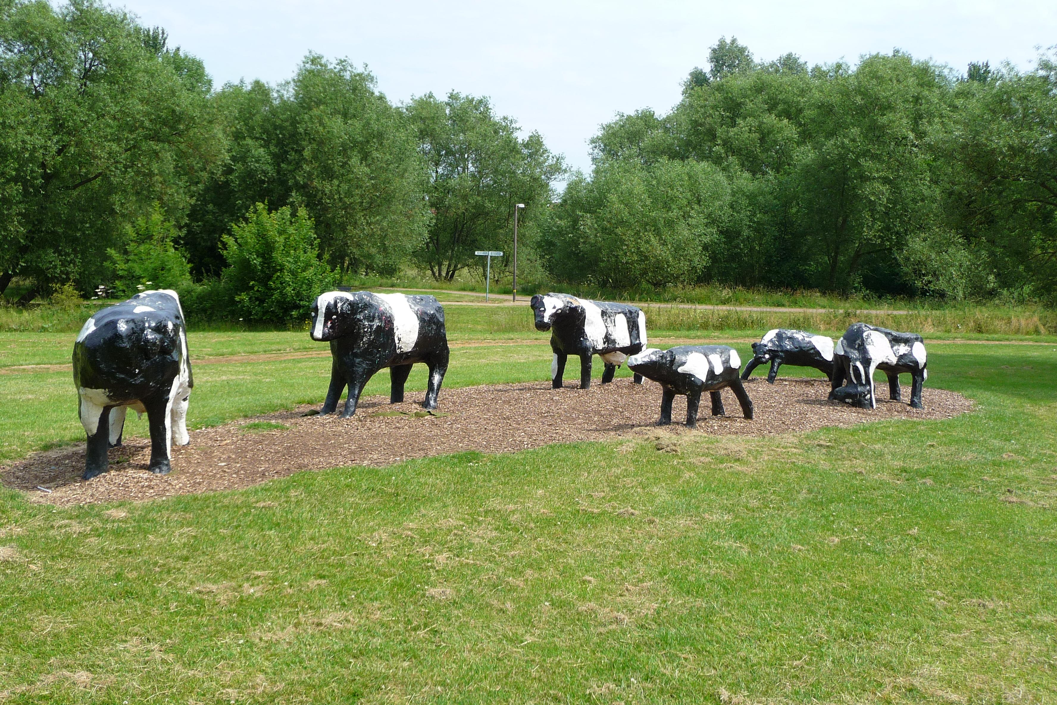 Milton Keynes Concrete Cows 2009 Flickr Photo Sharing