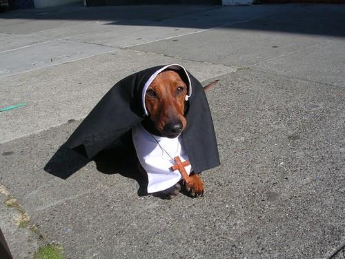 Cleo as a Nun.