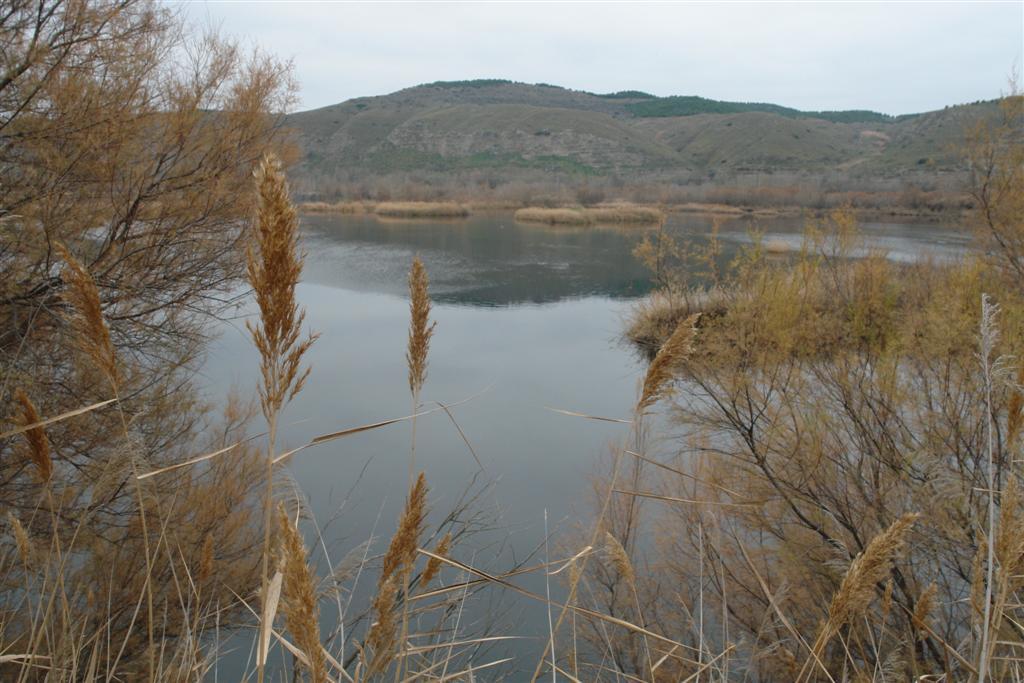Lagunas de Velilla