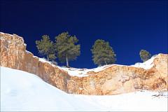 20090214   Bryce Canyon National Park, Utah 003